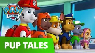 PAW Patrol Pups Stop a Pie-Clone Rescue Episode PAW Patrol Official & Friends!
