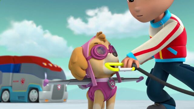 File:PAW.Patrol.S02E07.The.New.Pup.720p.WEBRip.x264.AAC 1103869.jpg