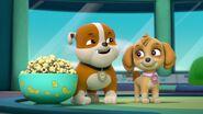 Paw.Patrol.S03E26E27.Parroting.Pups.Merpups.Save.the.Turbots.720p.WEB-DL.AAC2.0.H264-BTN 705330