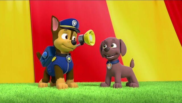File:PAW Patrol Pups Save the Hippos Chase Zuma.jpg