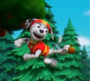 Screencapture-amazon-Pups-Party-Bats-Save-Sensei-dp-B075G2M1T1-ref-sr 1 1-1511604226117