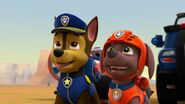 PAW.Patrol.S02E07.The.New.Pup.720p.WEBRip.x264.AAC 129529
