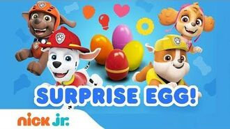 PAW Patrol's Surprise Eggs Guessing Game 🚗 Nick Jr.