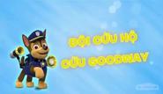 Những chú chó cứu hộ Đôi cứu hộ cứu Goodway
