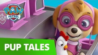PAW Patrol Pups Save a School Bus Rescue Episode PAW Patrol Official & Friends!