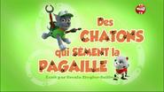 PAW Patrol La Pat' Patrouille Des chatons qui sèment la pagaille