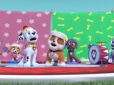 The Pups' Winter Wonder Show Song