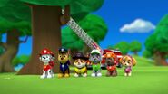 PAW.Patrol.S01E26.Pups.and.the.Pirate.Treasure.720p.WEBRip.x264.AAC 1031564