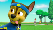 PAW Patrol Pups Save Sports Day Scene 2