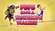 Pups Save a Tightrope Walker (HD)