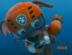Zuma in his diving suit