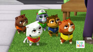 PAW Patrol Pups Save a Flying Kitty 32