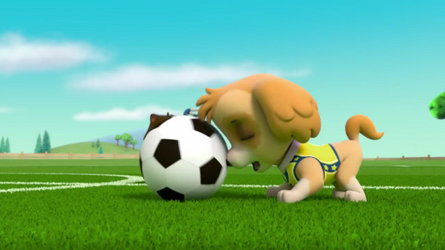 File:Pups Soccer 42.png