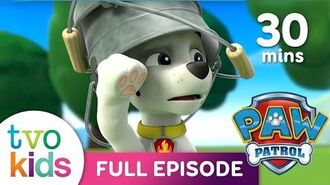 PAW PATROL Season 5 - Full Episodes - 30 Minute Compilation