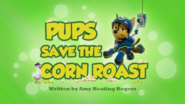 Pups Save the Corn Roast HD
