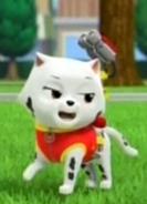 Cat Marshall