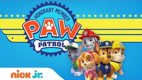 Video Play the 39 PAW Patrol Academy 39 Game with Marshall
