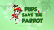Pups Save the Parrot (HD)