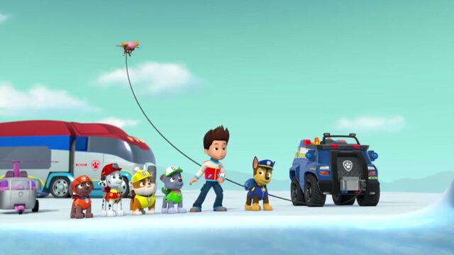 File:PAW.Patrol.S02E07.The.New.Pup.720p.WEBRip.x264.AAC 1115114.jpg