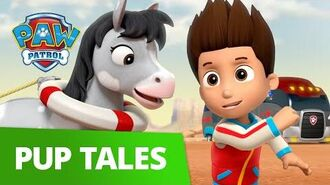 PAW Patrol Pups Save a Pony Rescue Episode PAW Patrol Official & Friends!
