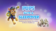 Pups Save a Sleepover (HQ)