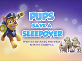 Pups Save a Sleepover