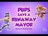 Pups Save a Runaway Mayor