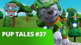 PAW Patrol Pup Tales 37 Rescue Episode