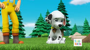 PAW Patrol Pups Save a Flying Kitty 10