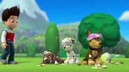 PAW.Patrol.S01E21.Pups.Save.the.Easter.Egg.Hunt.720p.WEBRip.x264.AAC 139840