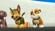 PAW.Patrol.S01E26.Pups.and.the.Pirate.Treasure.720p.WEBRip.x264.AAC 132866