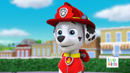 PAW Patrol Pups Save the Critters Marshall 2