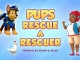 Pups Rescue a Rescuer