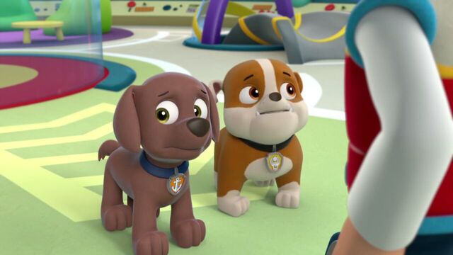 File:PAW.Patrol.S01E16.Pups.Save.Christmas.720p.WEBRip.x264.AAC 250117.jpg