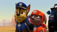 PAW.Patrol.S02E07.The.New.Pup.720p.WEBRip.x264.AAC 132199