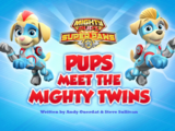 Mighty Pups, Super Paws: Pups Meet the Mighty Twins