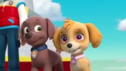 PAW Patrol Season 2 Episode 10 Pups Save a Talent Show - Pups Save the Corn Roast 213080