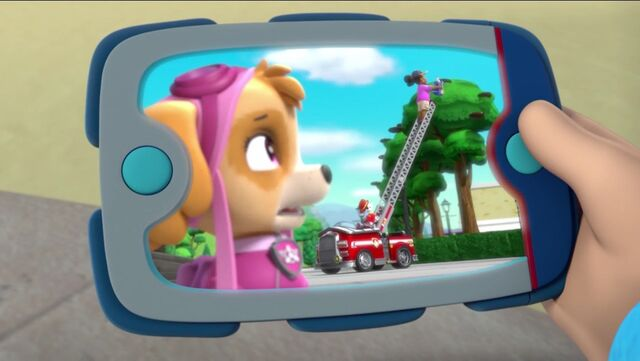 File:PAW Patrol Pups Save the Songbirds Scene 32.jpg