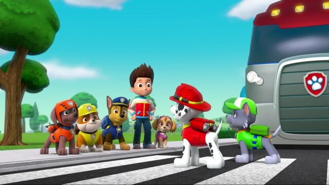 File:PAW Patrol Pups Save a School Bus Scene 48.jpg