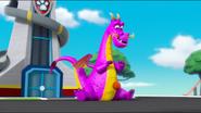 Dragon 31