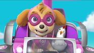 PAW Patrol Pups Save a School Bus Scene 29 Skye Chickaletta