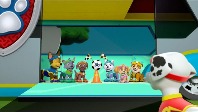 File:All Star Pups! 9.jpg