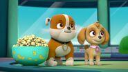 Paw.Patrol.S03E26E27.Parroting.Pups.Merpups.Save.the.Turbots.720p.WEB-DL.AAC2.0.H264-BTN 701492