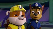 Paw.Patrol.S03E26E27.Parroting.Pups.Merpups.Save.the.Turbots.720p.WEB-DL.AAC2.0.H264-BTN 348098