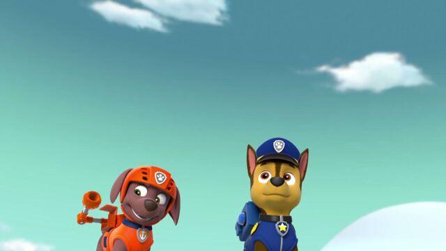 File:PAW.Patrol.S02E07.The.New.Pup.720p.WEBRip.x264.AAC 817483.jpg