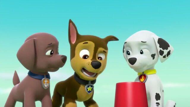 File:PAW Patrol Season 2 Episode 10 Pups Save a Talent Show - Pups Save the Corn Roast 128495.jpg