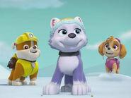 Silly-short-paw-patrol-ice-or-snow-4x3