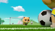 Pups Soccer 20