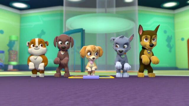 File:PAW.Patrol.S01E21.Pups.Save.the.Easter.Egg.Hunt.720p.WEBRip.x264.AAC 186687.jpg
