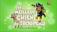 PAW Patrol La Pat' Patrouille Le Meilleur Chien de troupeau